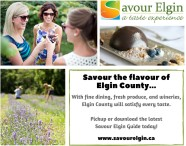 Savour the flavour of Elgin County...