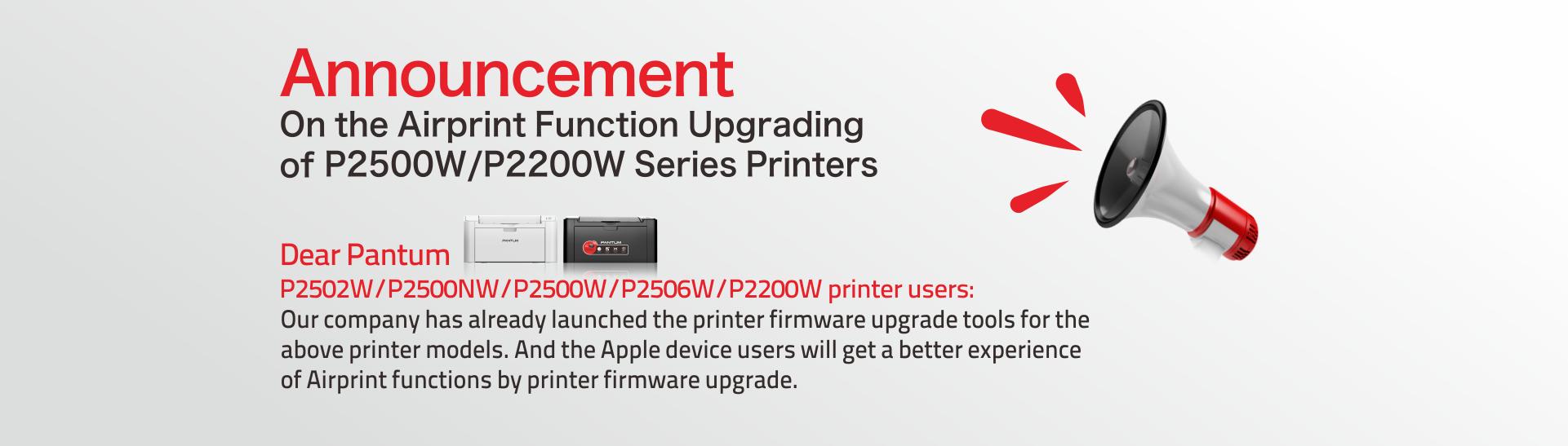 Pantum P2500W Monochrome Laser Printer With Wireless At
