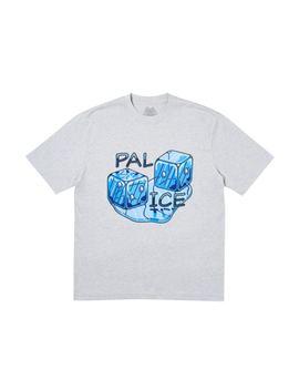 1d5564bb Shoptagr | Palace Pal Ice T Shirt (Ss19) Grey Marl by Stock X