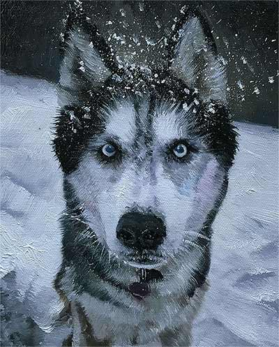 an oil painting of a black and white blue eyed husky malamut brush strokes