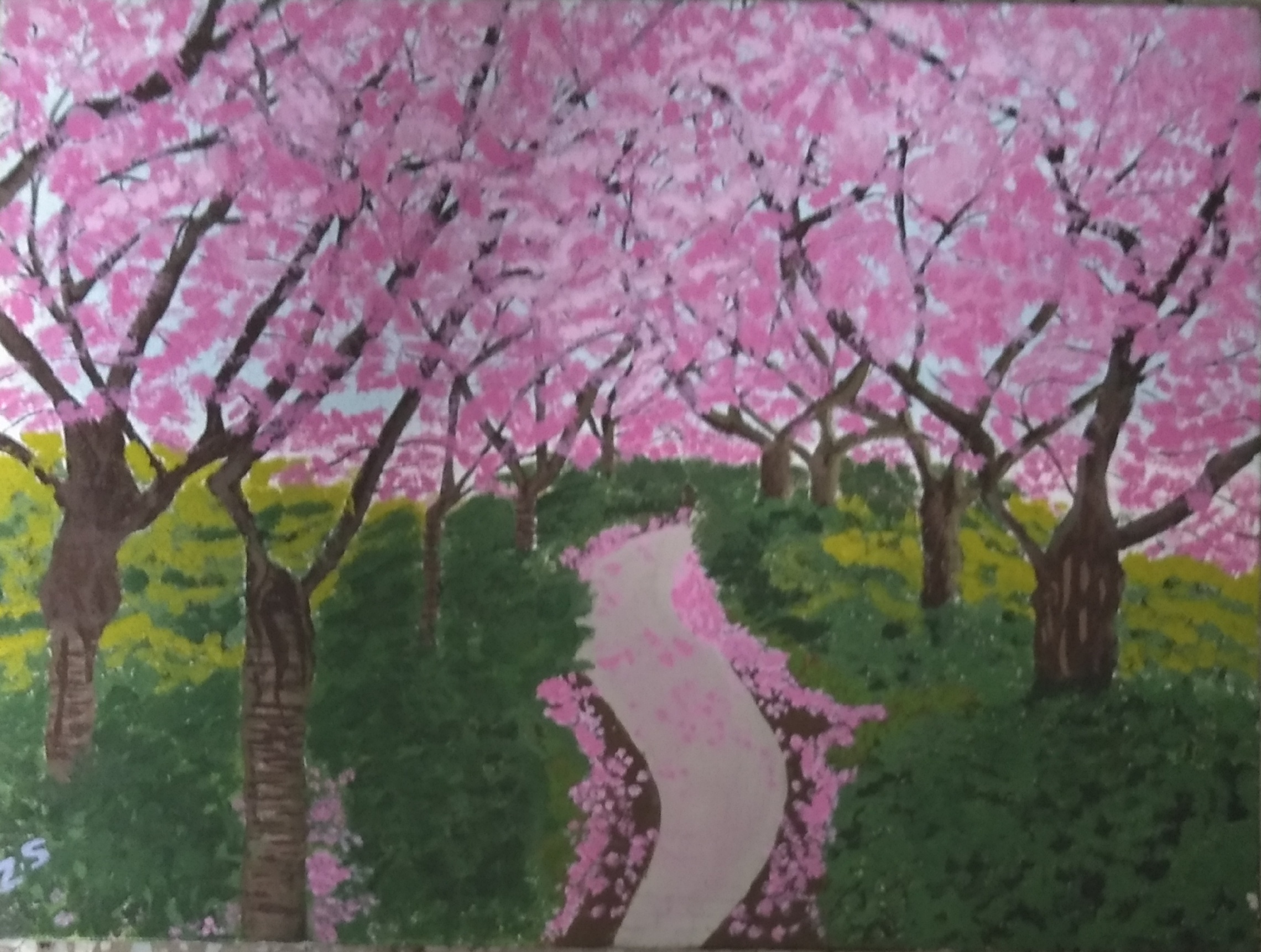 Sakura -paintings