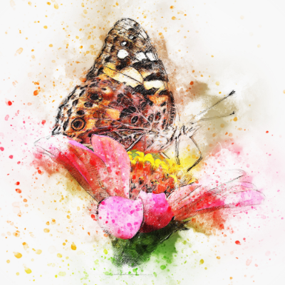 Monarch Butterfly On A Flower-illustration