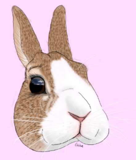 Digital Bunny Thumper-illustration