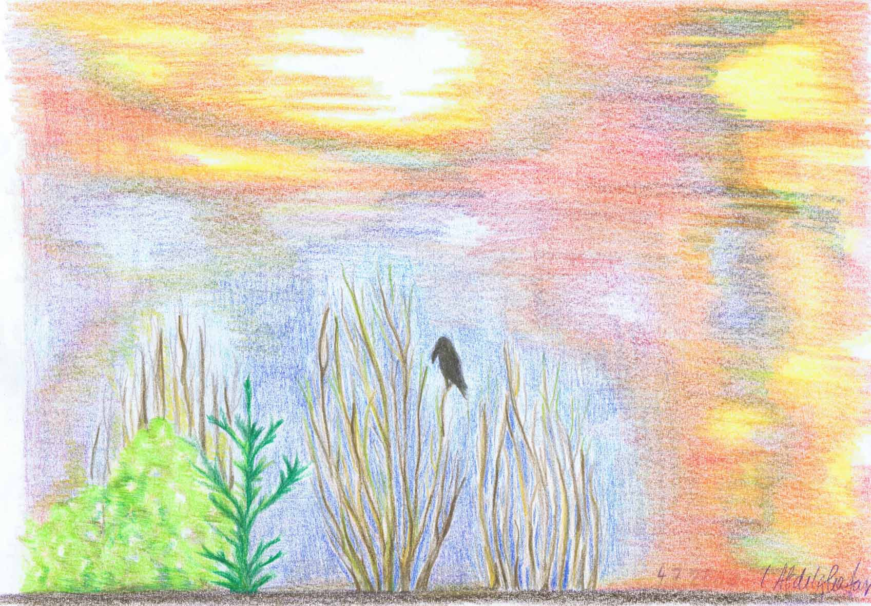 Sunset With Bird-drawing