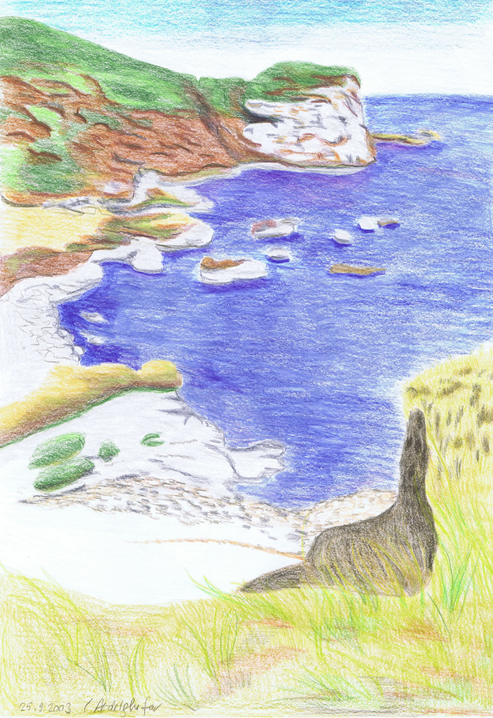 Landscape Of A Coast-drawing Showflipper