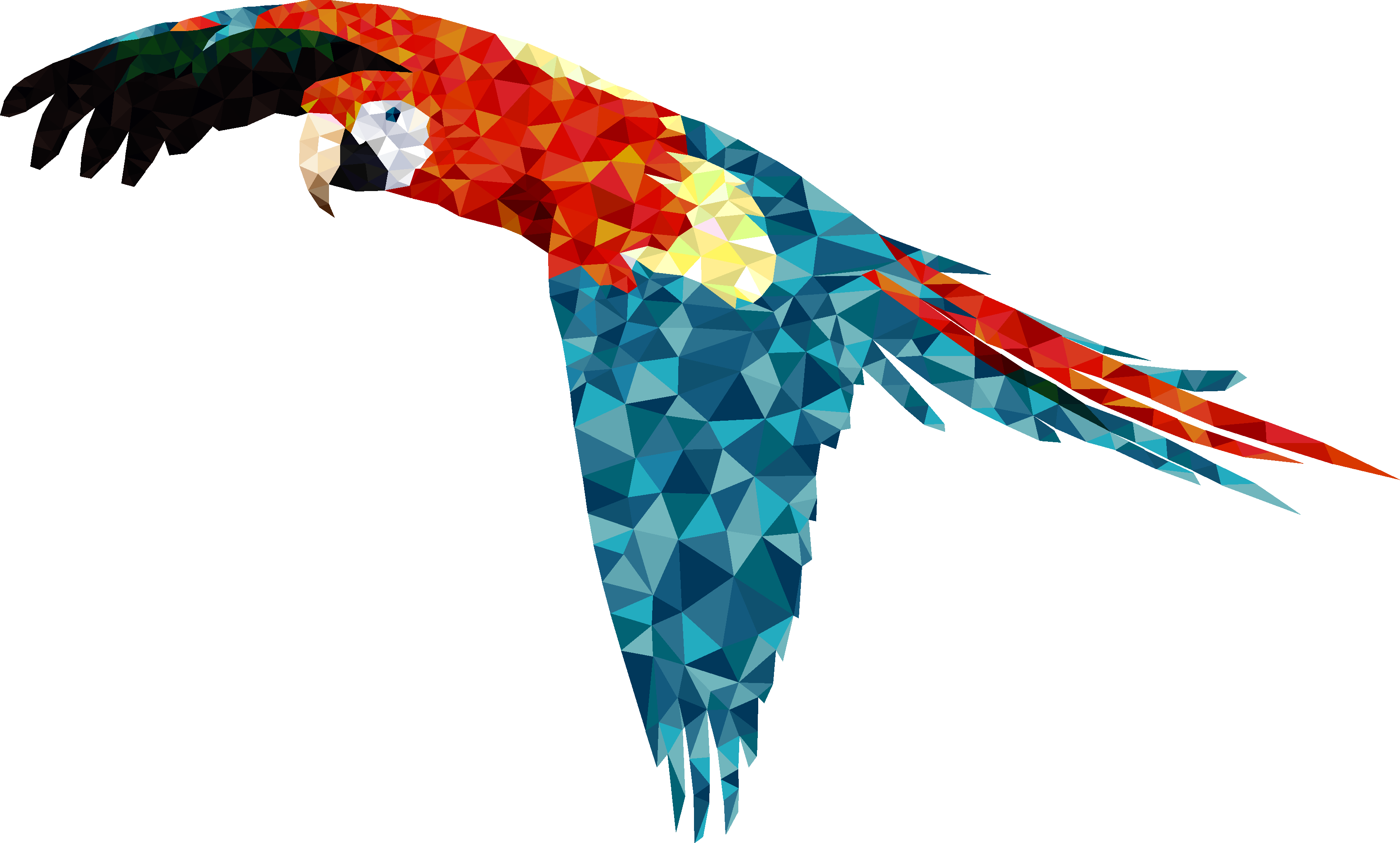 Scarlet Macaw-digital sketches Showflipper by Casca