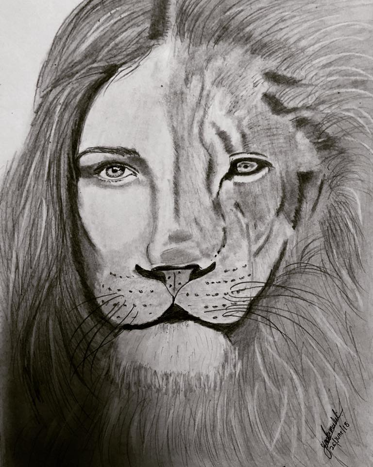 Lion And Lioness-drawing Showflipper