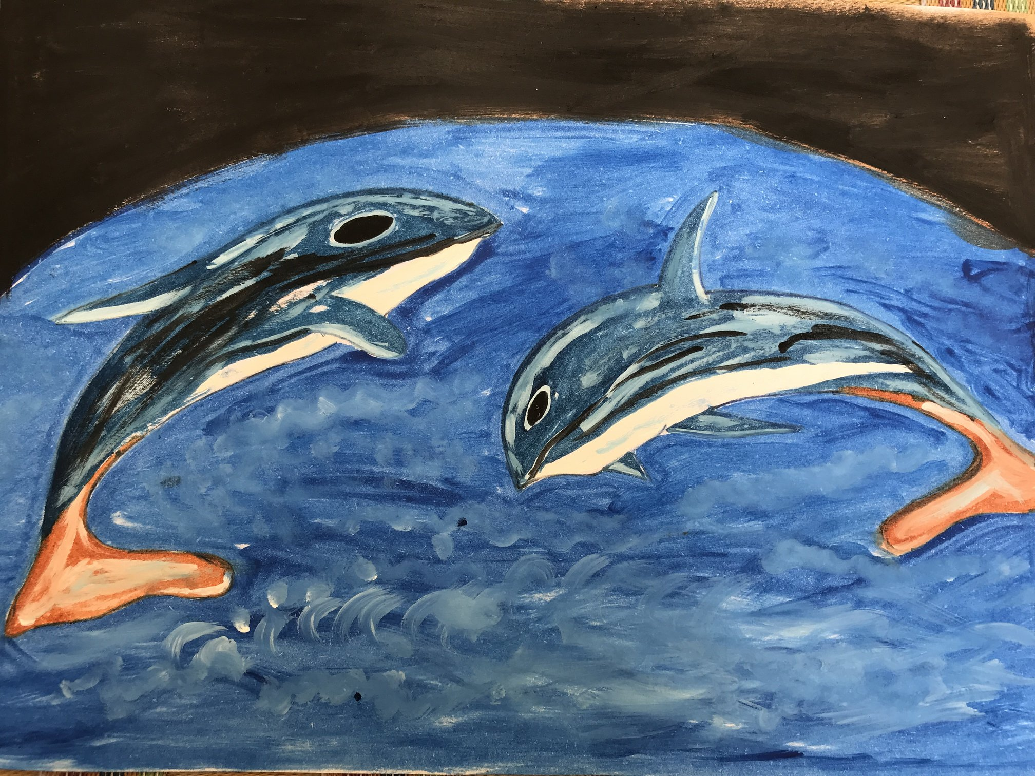 Dolphin Painting-paintings Showflipper