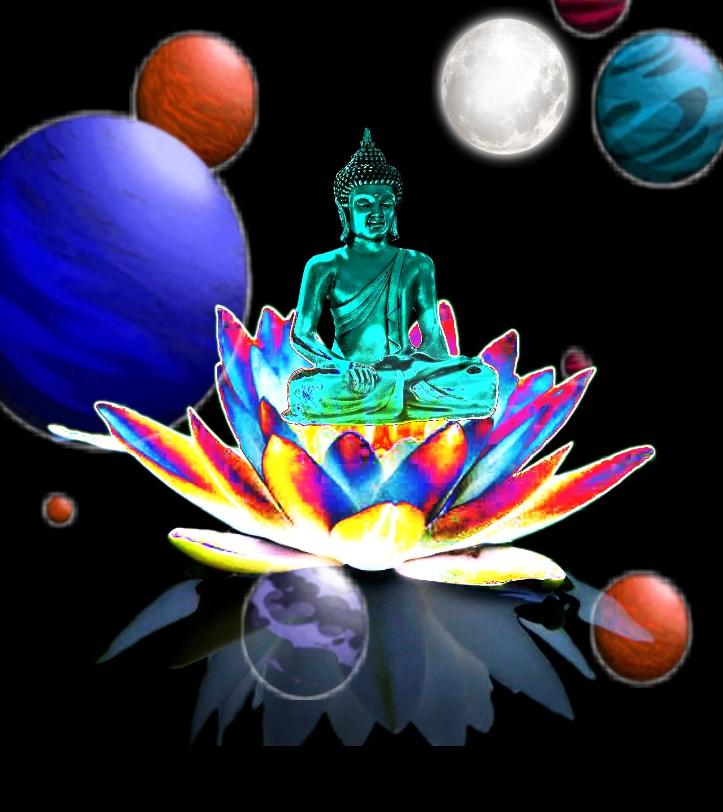 Buddha-illustration Showflipper