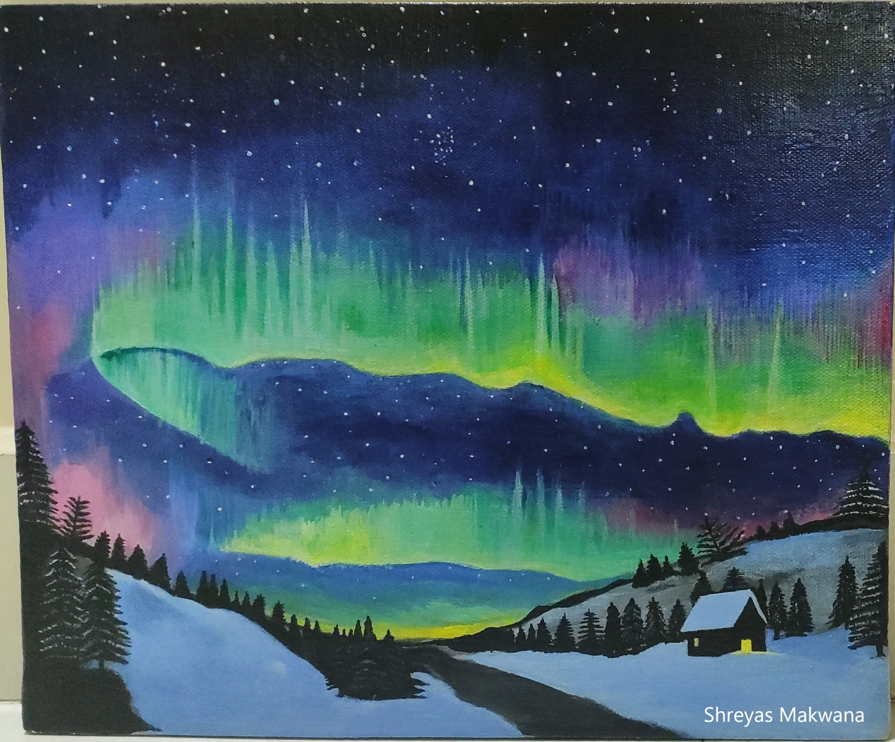 Aurora-paintings Showflipper