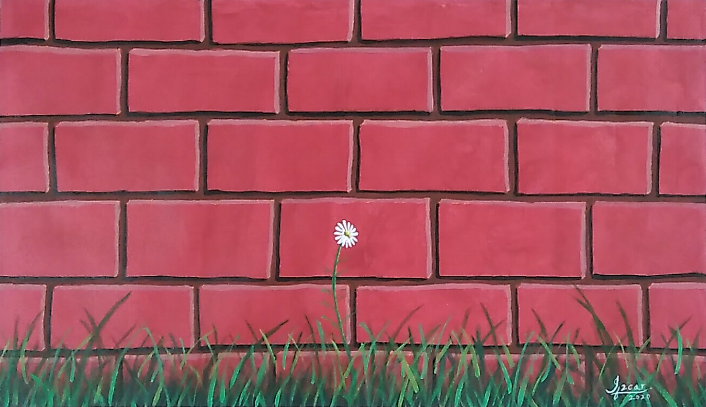 White Flower By Red Wall-paintings Showflipper