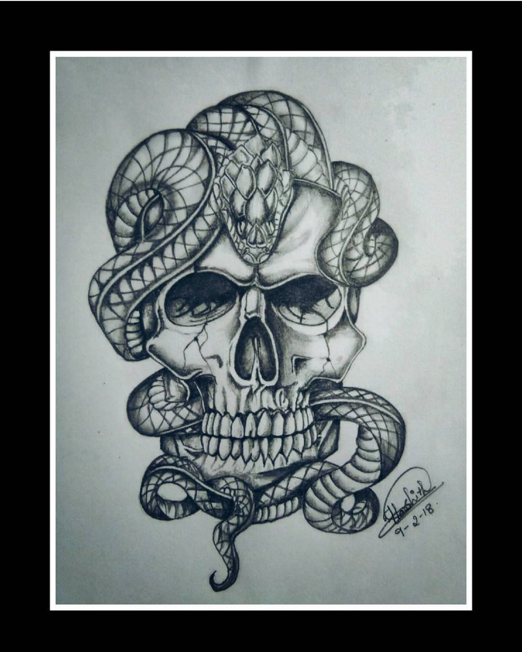 Snake In The Head Skeleton Sketch Fine Art