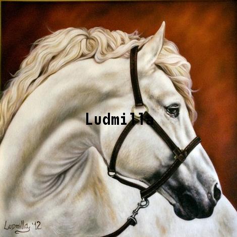 Cavallo Bianco  by Ludmilla