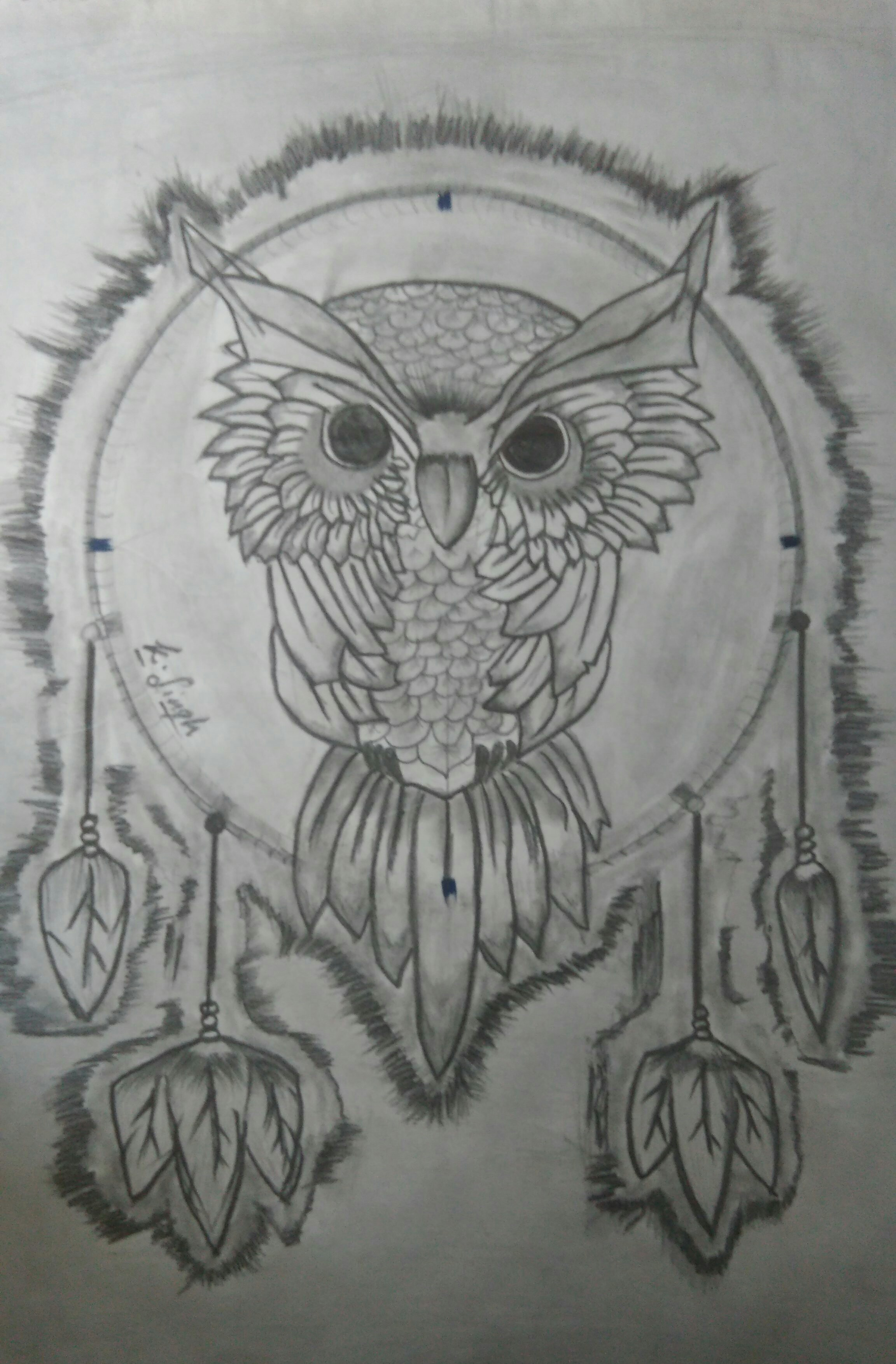 Dreaming Owl Sketch By kushalsingh rajpurohit, Drawing Fine
