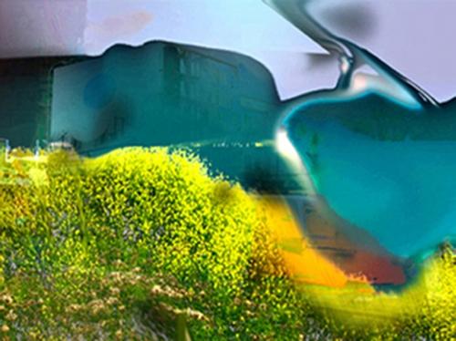 Freeviewed Digital Art
