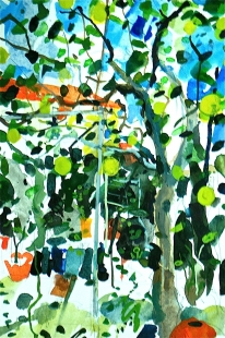 Lemon Tree Cypurs Fine Art