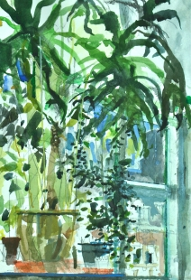 Studio Interior with plant Fine Art  by Michael Hoar