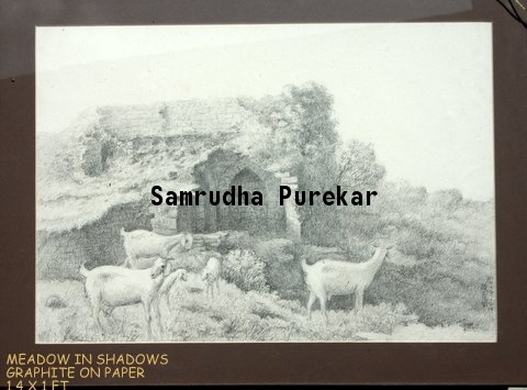 Meadows in shadows by Samrudha Purekar