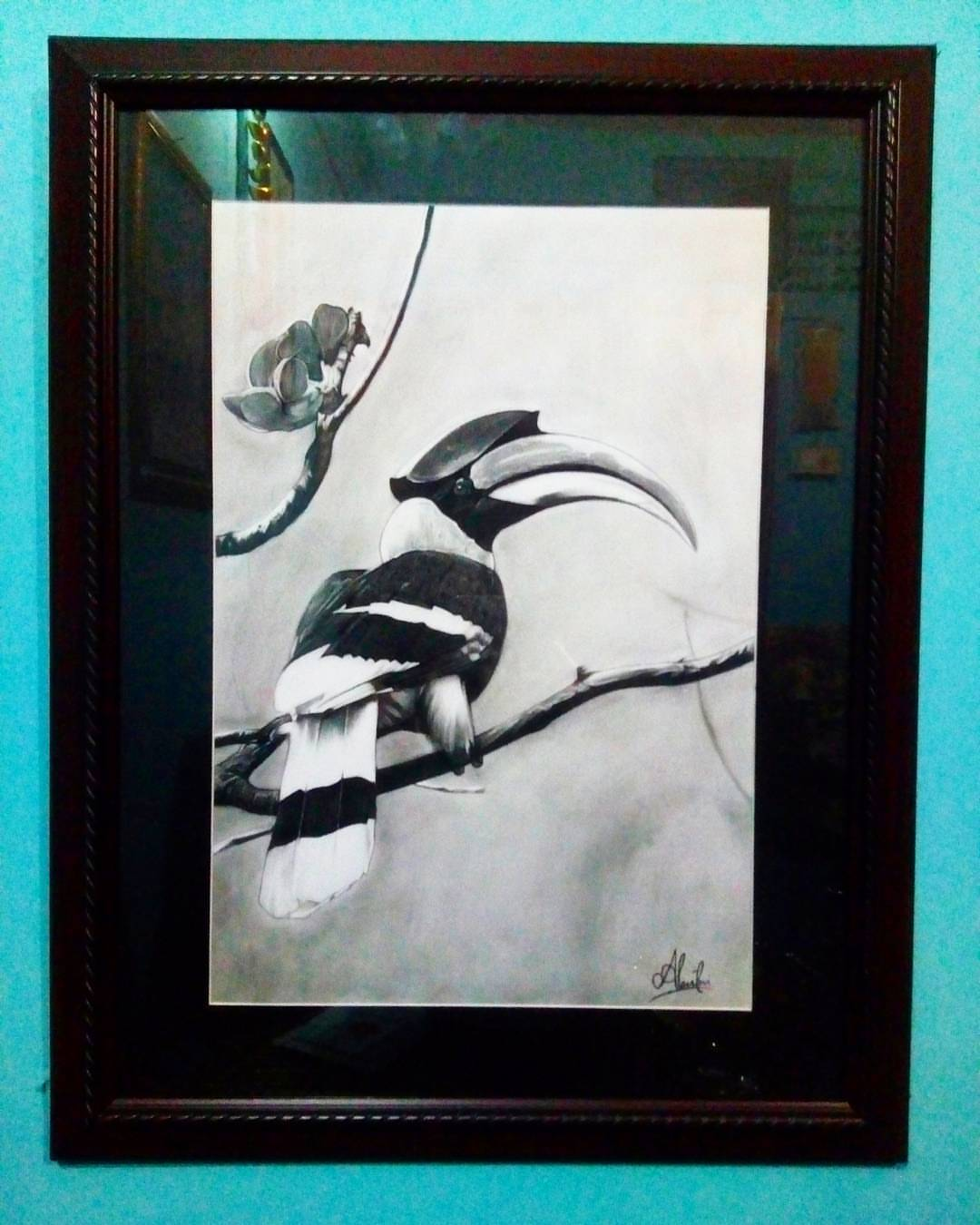 The Great Hornbill  Fine Art
