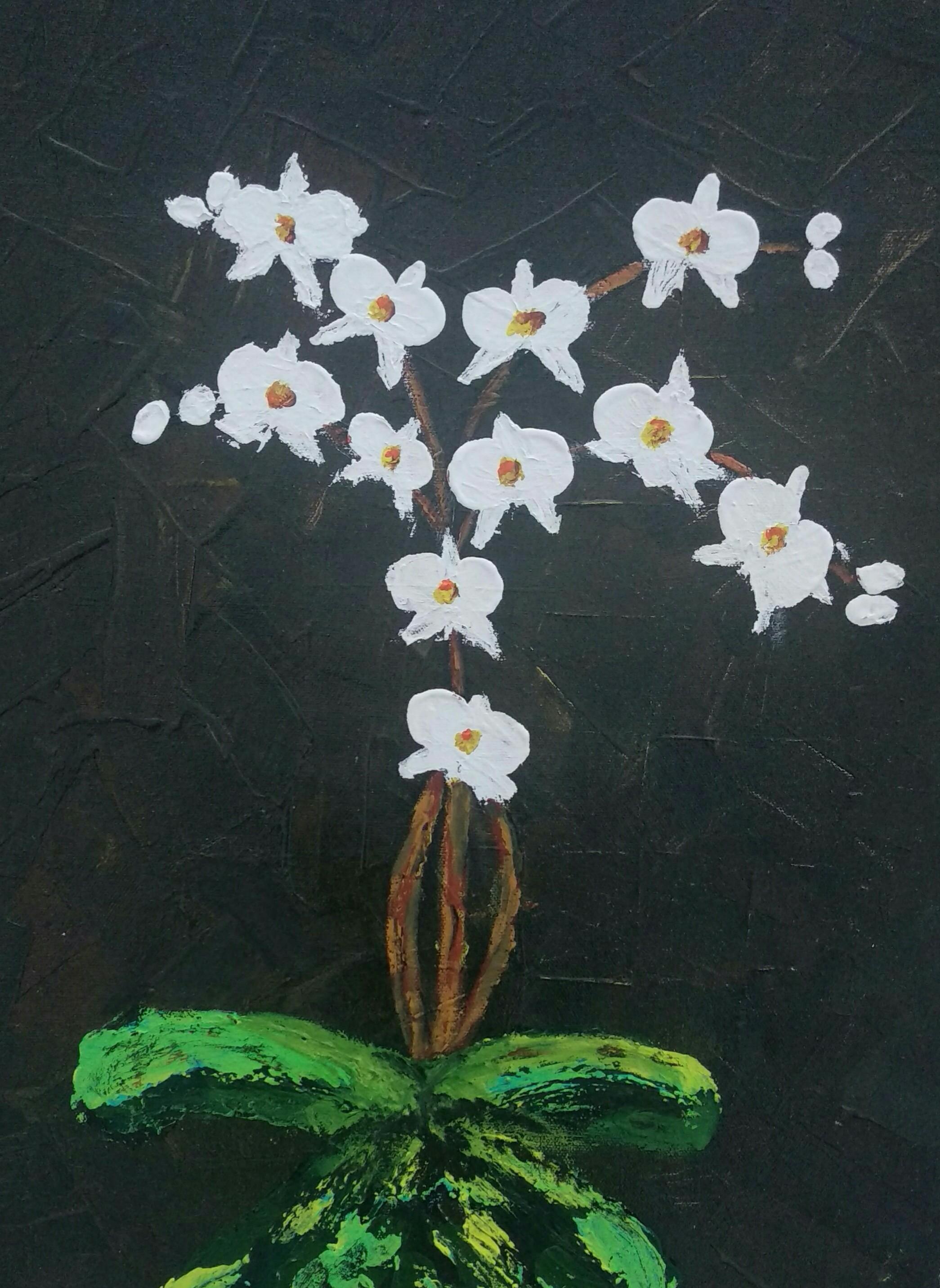 Orchids Fine Art