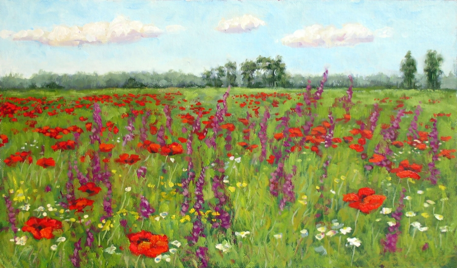 Poppies on field Fine Art  by Bezrodnykh Alexander