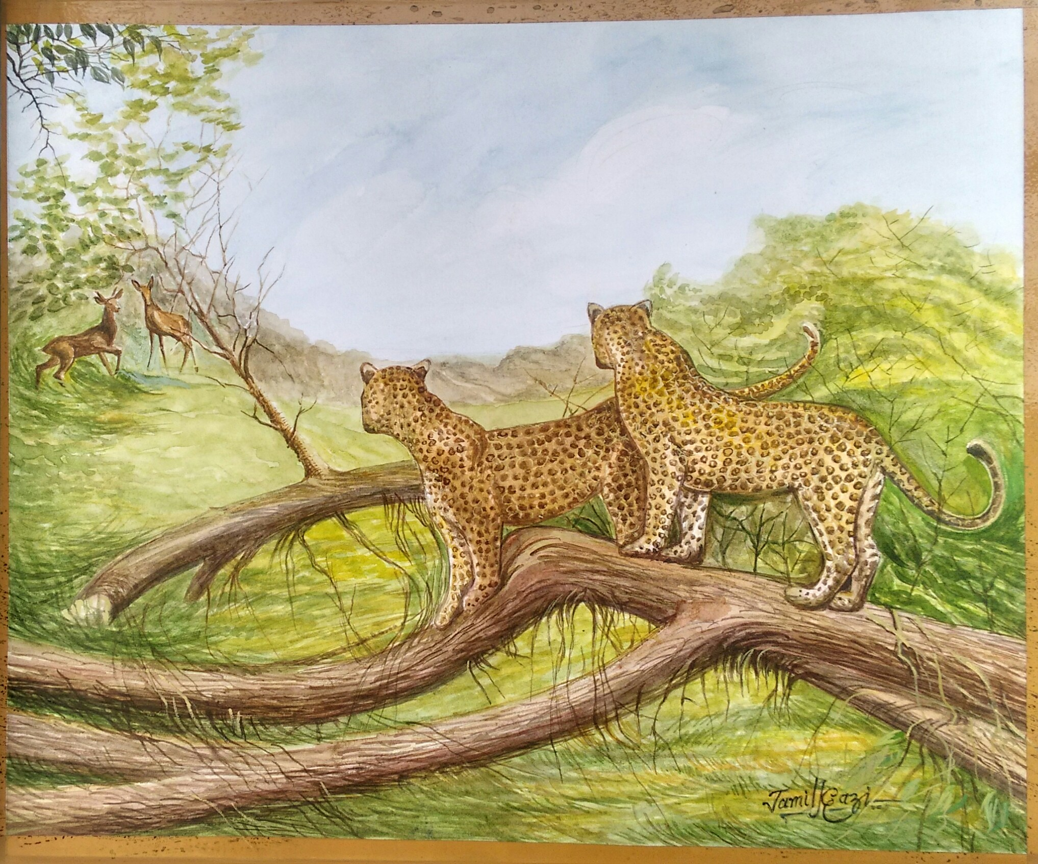 Cheetah And Deer: Painting Fine Art