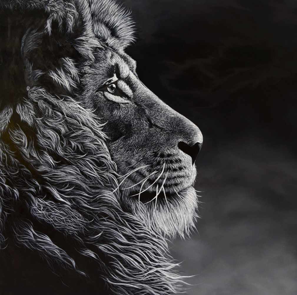 Lion Painting For Sale Fine Art Sketch by Elena Dmitrenko