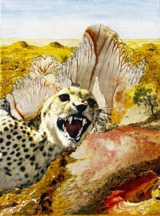 Desert with Gepard Fine Art