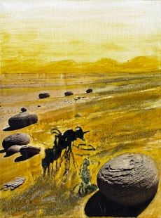 Desert with Stone Balls Fine Art