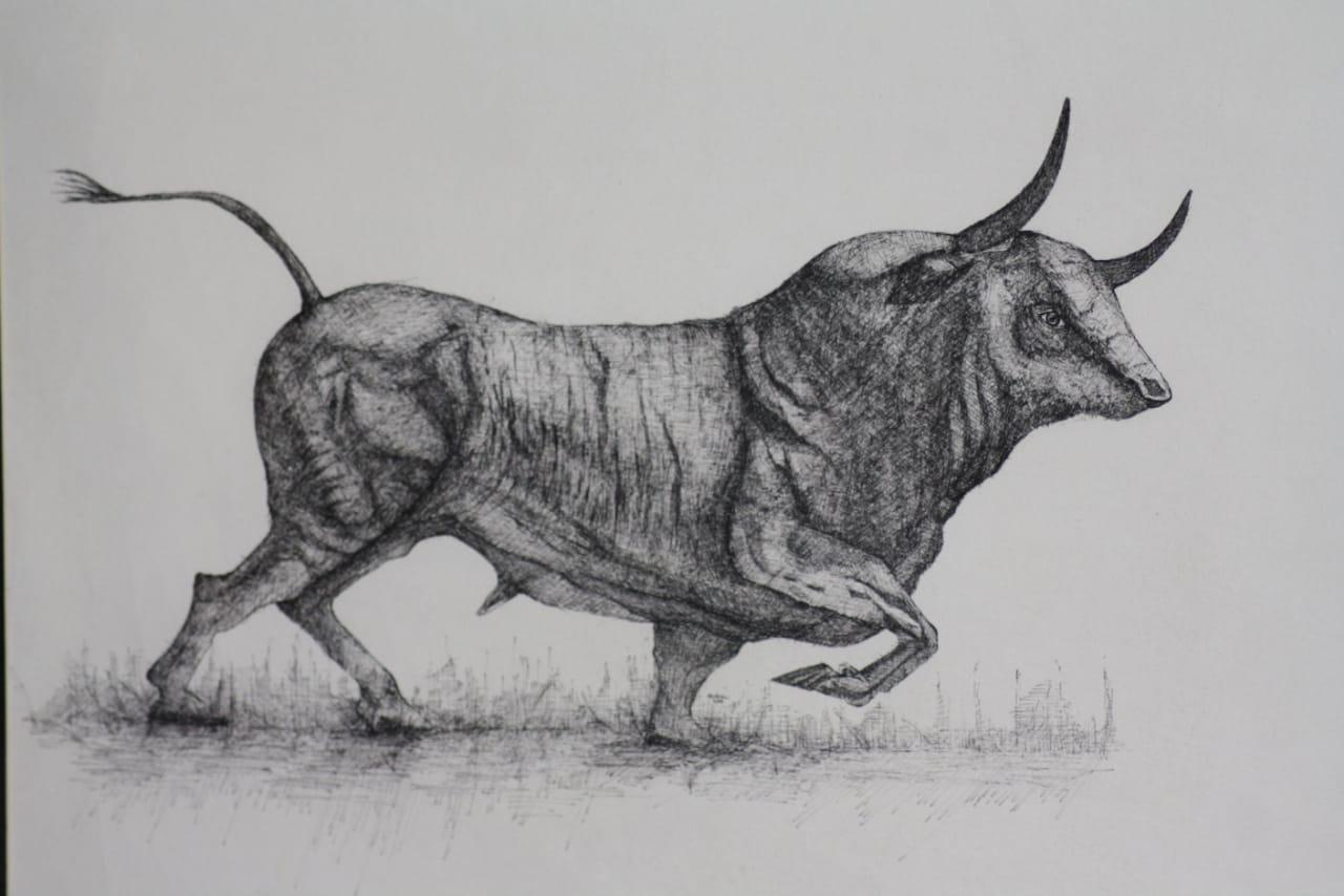 Bull Fine Art
