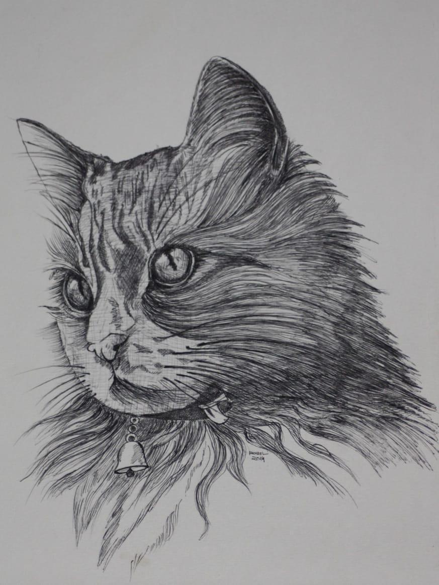 Cat 1 Fine Art