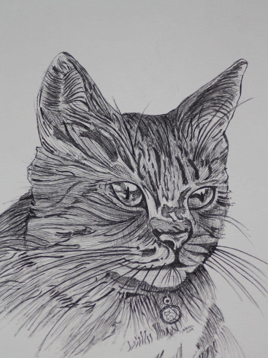 Cat 2 Fine Art