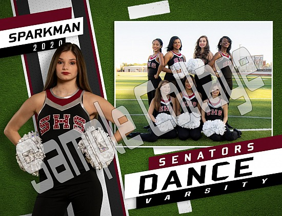 SHS Dance Team 2020 picture are ready to order!