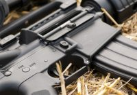 Teachers Federation Calls Out Gun Investors