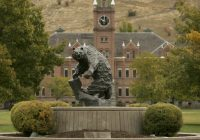 Report: University of Montana Endowment Allegedly Invests in Tax Havens
