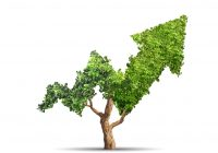 Sweden's AP2 Sees a Green Bond Explosion in Public Sector