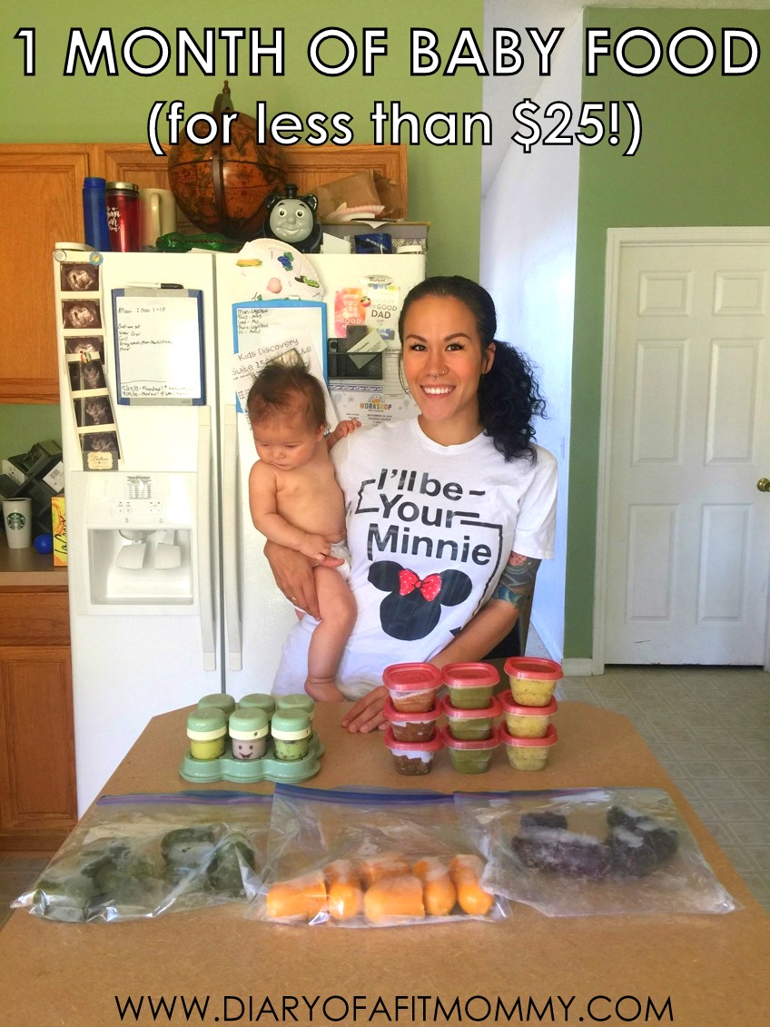 e44068f79 How to Prep One Month of Healthy Baby Food for Less Than  25 ...