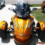 Cosmos Orange tone Spyder ST