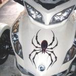 Bellerdine Spider Red-Black