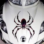 Bellerdine Spider in Black- red combo