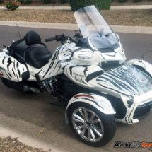 f3-tiger-stripe kit black