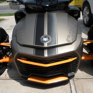F3-GT-racing-stripes-in-carbon-fiber