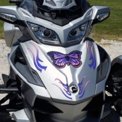 Purple-Pink-Butterfly-front