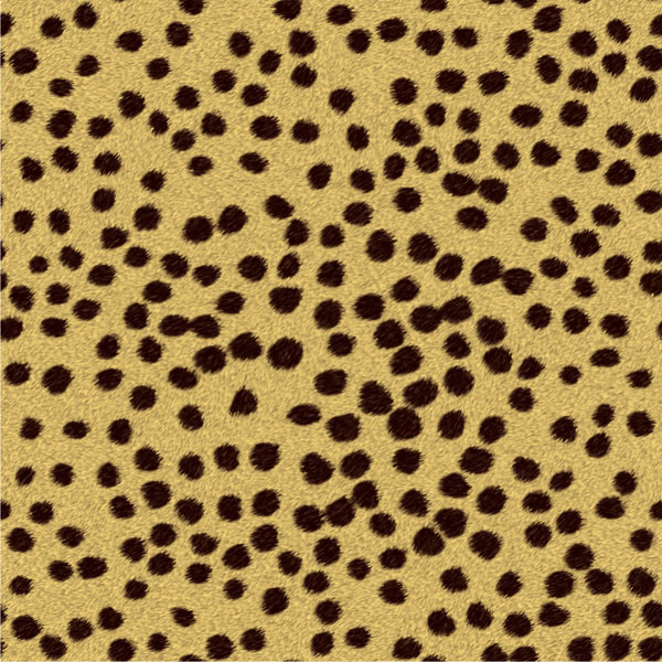 AMS-181-CTA cheetah
