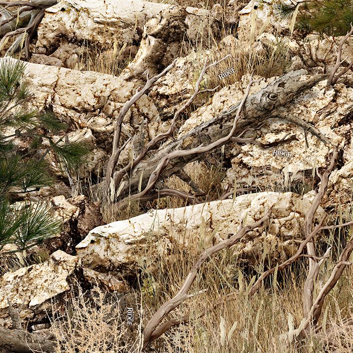 Boneyard Kanyon Ridge