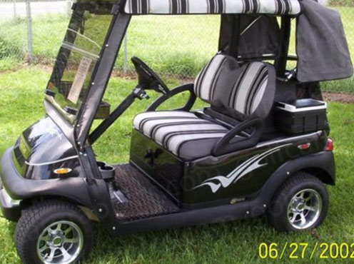 Raptor 2 Color Decal Golf Car Graphic