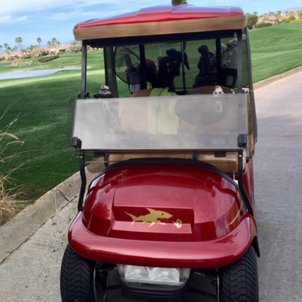 f-07-underwater-chase in Gold metallic shown. Available in many color options you can install it wherever you like on the golf car.