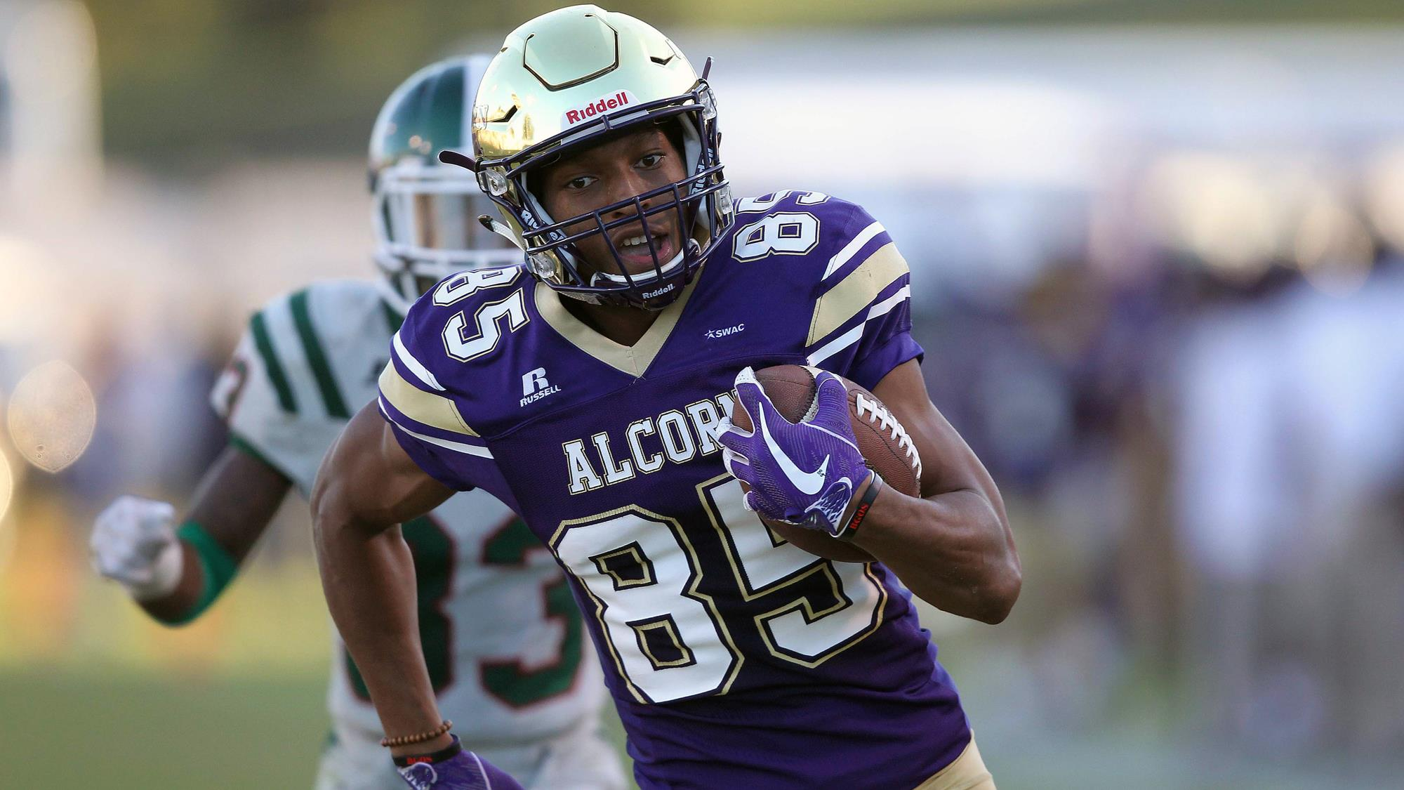 Image result for alcorn state braves football