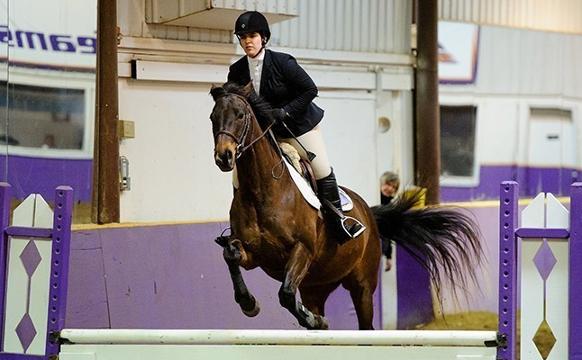 Cara Greaney Hunt Seat Equestrian Alfred University