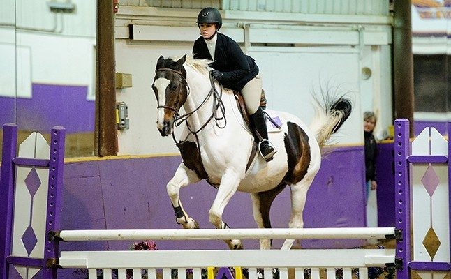 Hunt Seat Equestrian Roster Alfred University Athletics